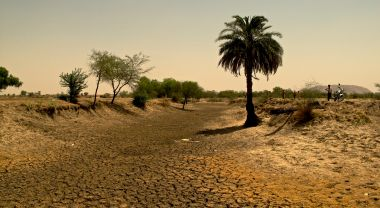 Drought in Rajasthan, India. Flickr/Austin Yoder