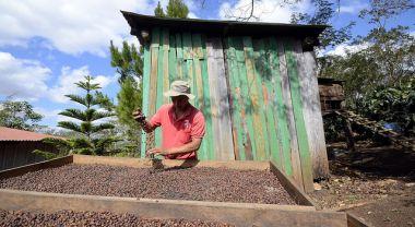 Coffee farmer in Nicaragua