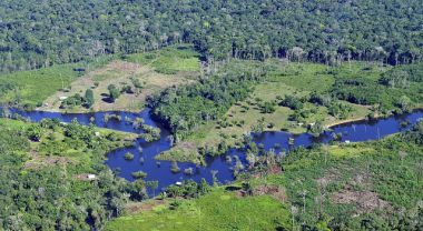 What can other big data initiatives seeking to combat climate change learn from Global Forest Watch? Photo Credit: CIAT/Flickr