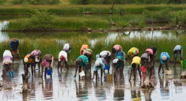 Senegal villagers