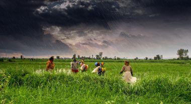 Numerous small-scale adaptation projects are underway across India's rainfed regions. (Madhya Pradesh, India) Photo by Rajarshi Mitra/Flickr.
