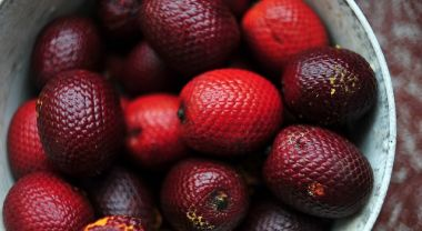 Wild fruit in Amazonia