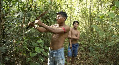 The Yudja rely on their community forest for food, shelter and livelihoods. Photo by André D'elia