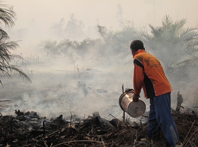 <p>Forest and peat fires in Riau, Indonesia. Photo by Julius Lawalata/WRI</p>