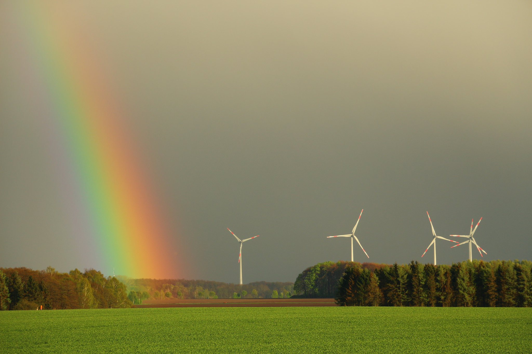 <p>Wind power prices are reaching all-time lows. Flickr/HP Brinkmann</p>