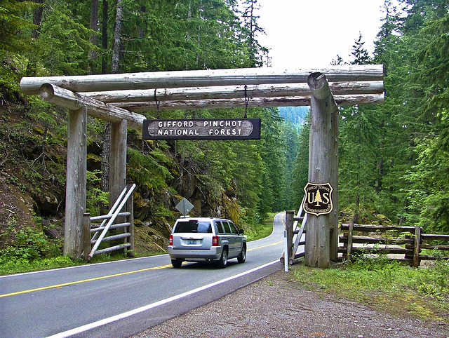 <p>Entrance to Gifford Pinchot National Forest in Washington state, site of illegal logging. Photo by USFS, Flickr</p>