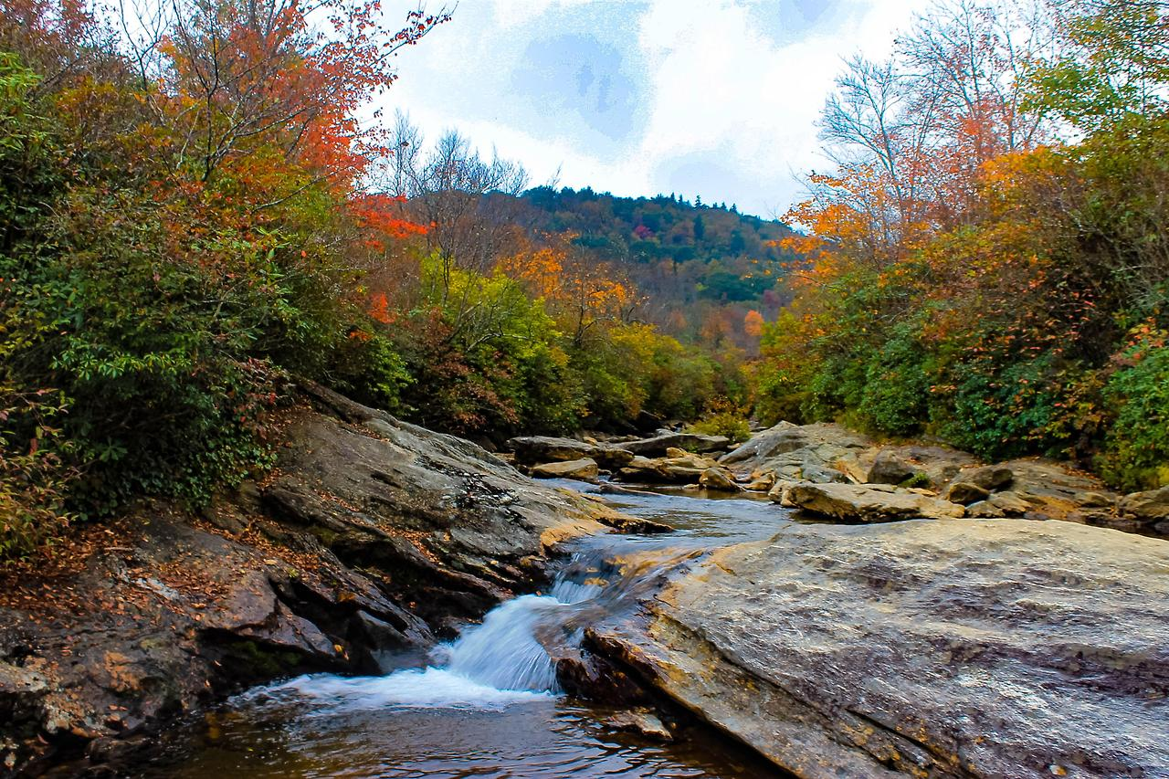 <p>A creek runs through a forest in North Carolina. Flickr/junaidrao</p>