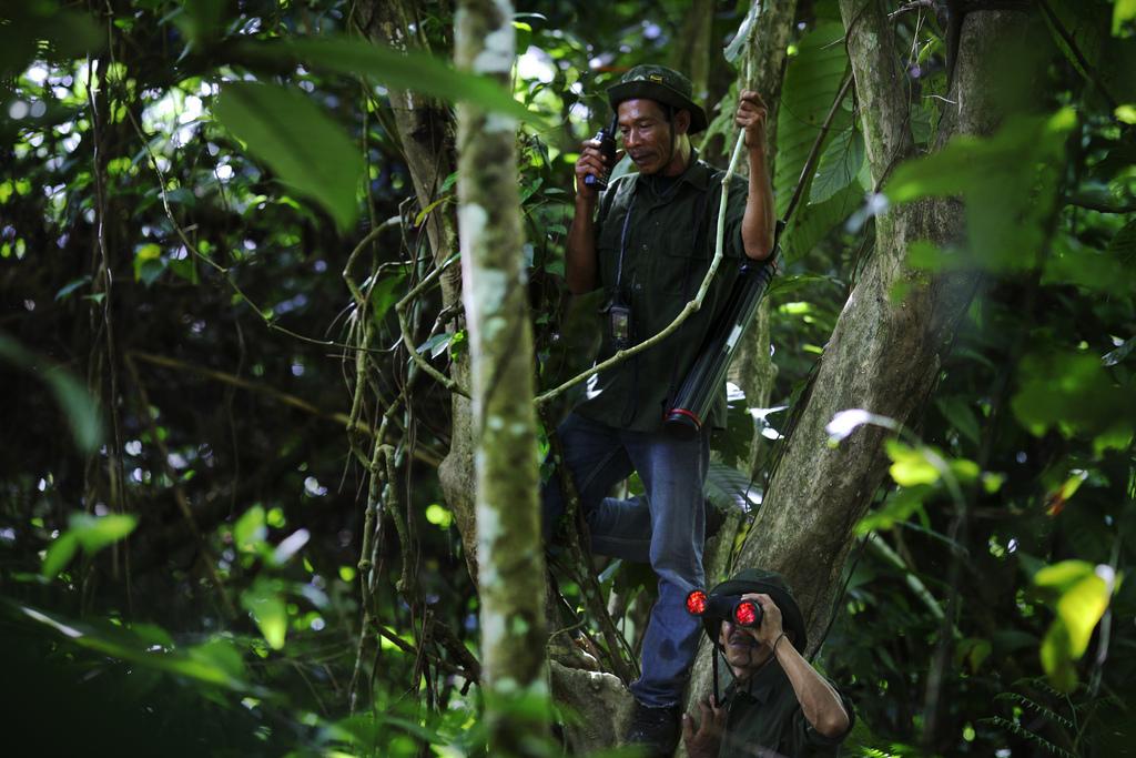 <p>Rangers in the Leuser Ecosystem. Flickr/DFID</p>