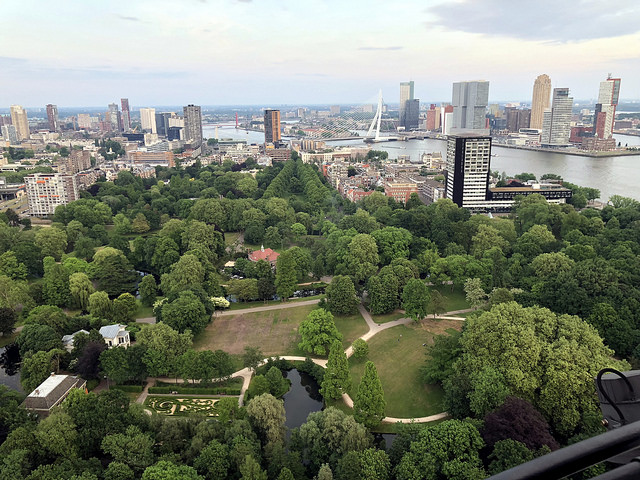 <p>Green spaces in Rotterdam are part of its adaptation strategy. Photo by Luis Suarez/Flickr</p>