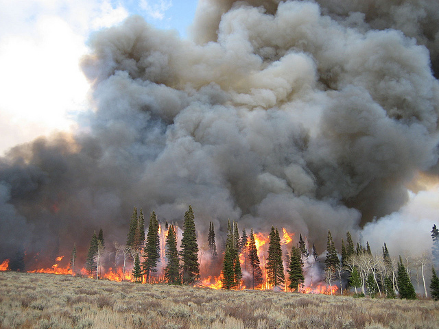 <p>Wildfires in Wyoming. Photo by Mark Gocke/Flickr</p>
