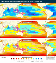 <p>Threat to Coral Reefs from Ocean Acidification in the Present, 2030, and 2050</p>