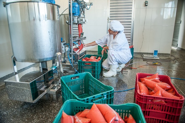 <p>Frozen fruit pulp being bagged at the factory. Photo by Luiz Fernando Ricci/WRI Brasil</p>