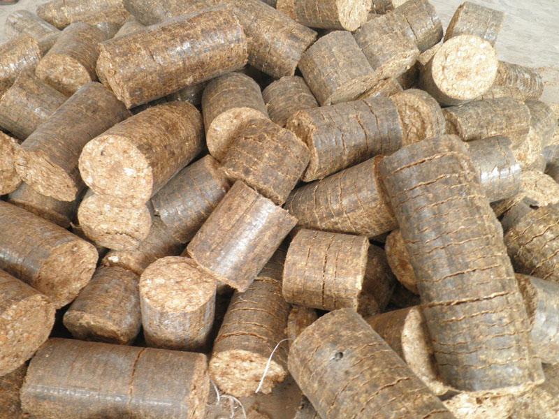 <p>Biomass briquettes can replace firewood. Photo by Gulhantr/Wikimedia Commons</p>