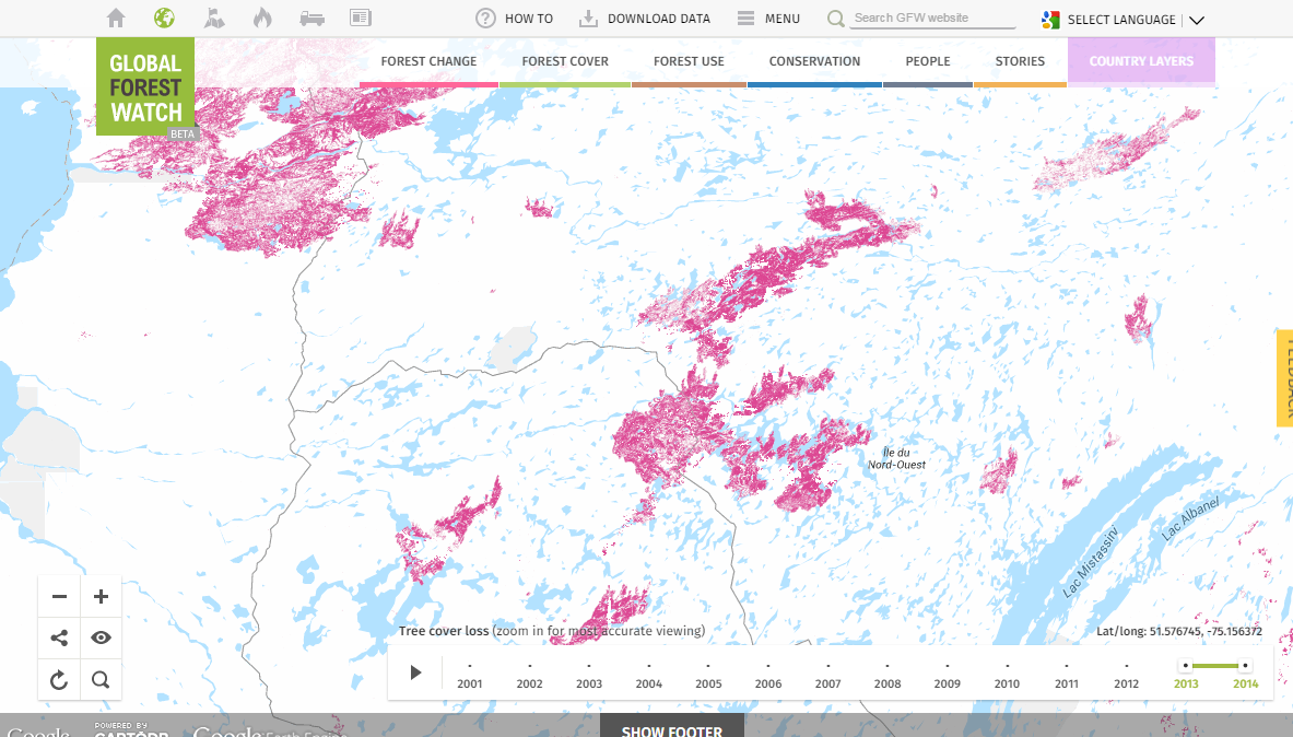 <p>Pink areas show tree cover loss. Data visualization by Vizzuality.</p>