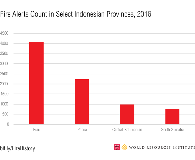 <p>Despite 2016 being a wet year, the Riau province experienced four times as many fires at the historically fire prone provinces of Central Kalimantan and South Sumatra.</p>
