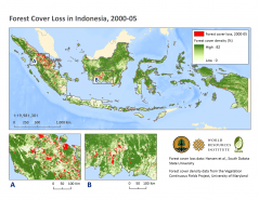<p><strong>Forest Cover Loss in Indonesia, 2000-2005: The Starting Point for the Norwegian Billion to Reduce Deforestation</strong></p>