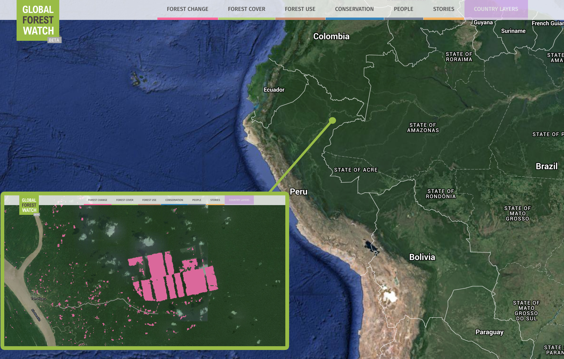 <p>United Cacao cleared 2,000 hectares (5,000 acres) of land near Iquitos, Peru, the world's largest city inaccessible by road. Graphic by Global Forest Watch.</p>