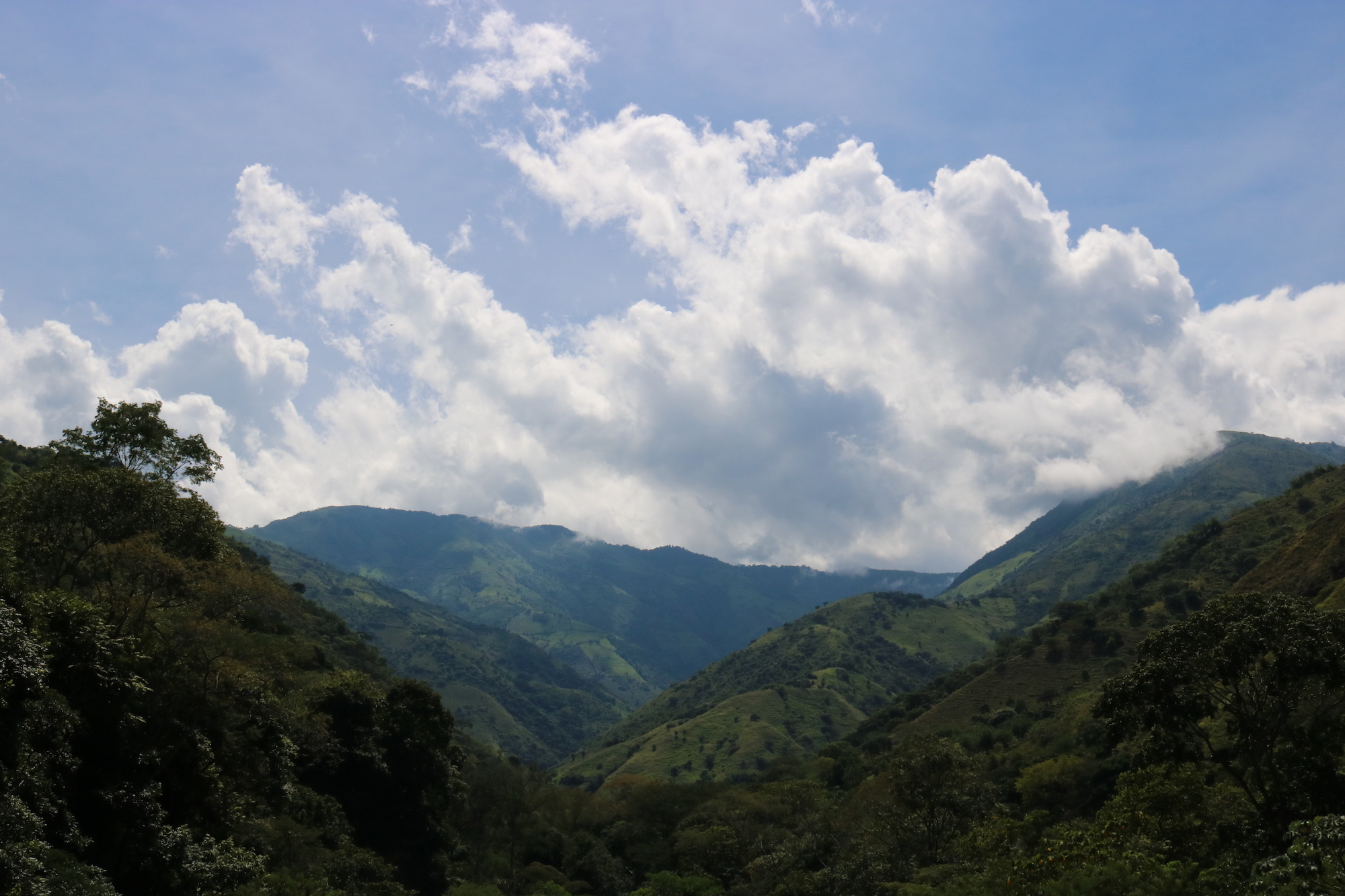 <p>Colombia's rolling hills. Photo by Alejandra Lopez Rodriguez/Flickr</p>