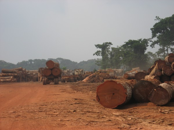 <p>Population growth, poor rural populations, and lack of alternative sources of energy for low income people are expected to exacerbate forest cover loss in the Congo Basin in the future. Photo credit: WRI</p>