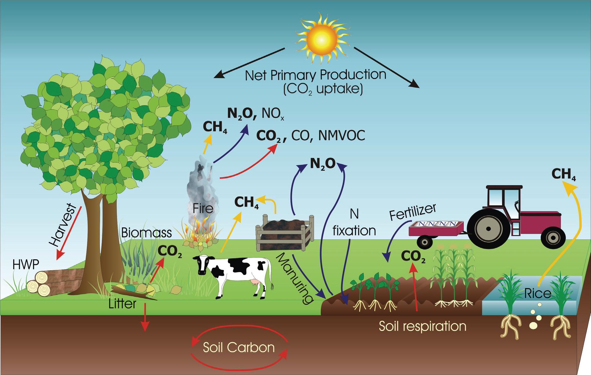 <p>Esta imagem representa a variedade de fontes de emissões em fazendas. Font: Relatório do IPCC</p>