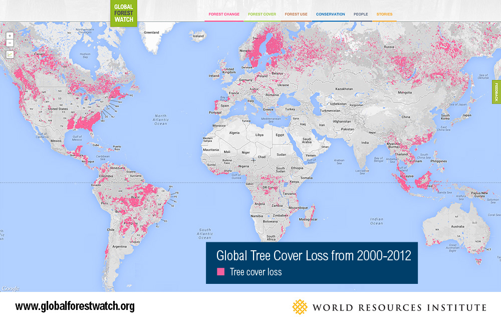 9 maps that explain the world s forests world resources institute