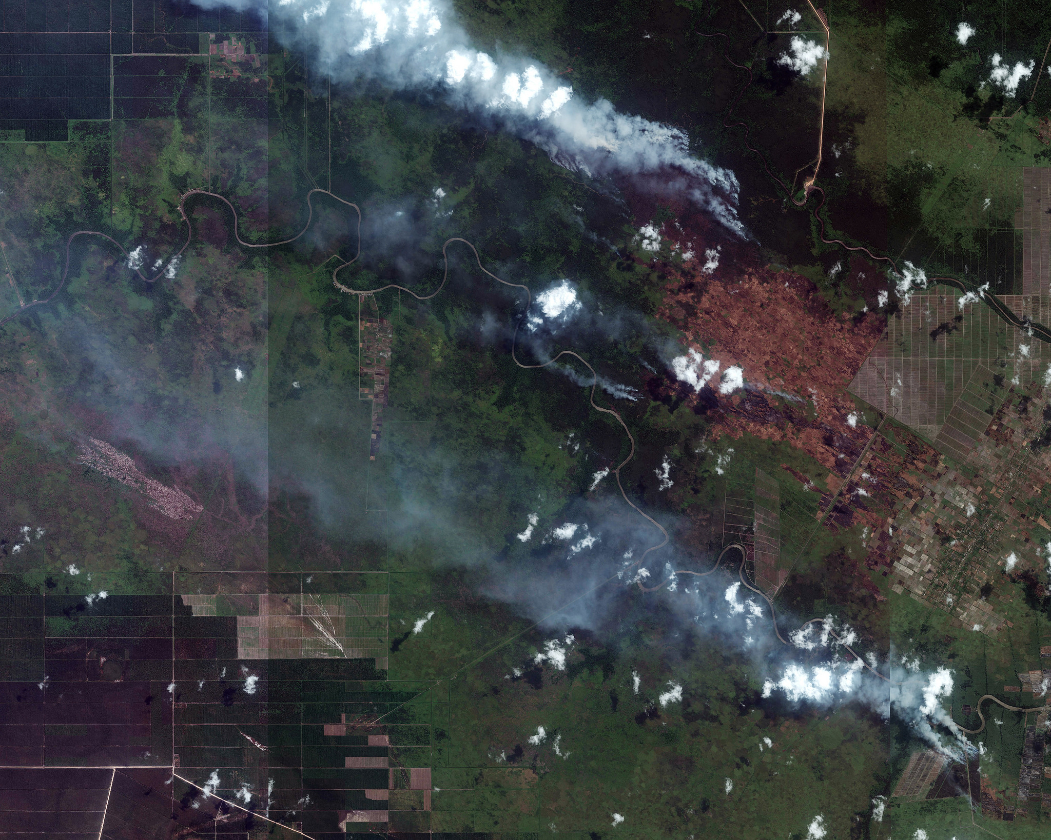 <p>Active fires burning amid plantation development in South Sumatra on September 10th were captured in this image by Digital Globe's WorldView-2 satellite. (Lat -3.275, Lon 105.75; view active fires in this location on GFW Fires)</p>