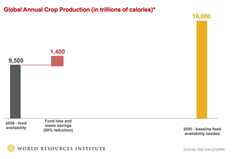 The Global Food Challenge Explained In 18 Graphics World Resources