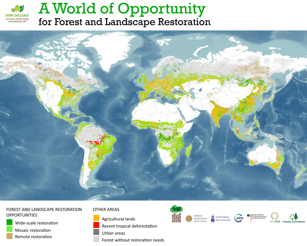 <p>Global Map of Forest and Landscape Restoration Opportunities (click to enlarge)</p>