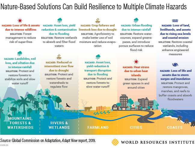 <p>No matter the landscape, countries can use nature-based solutions to build resilience and protect communities from the impacts of climate change. Photo by the Global Commission for Adaptation/WRI</p>