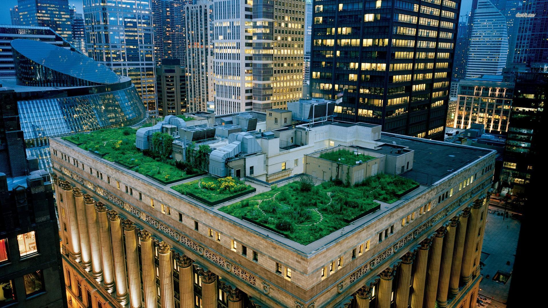 <p>Green roofs can capture rainwater, reducing flooding and stress on sewer systems. Photo by DJANDYW.COM/Flickr</p>