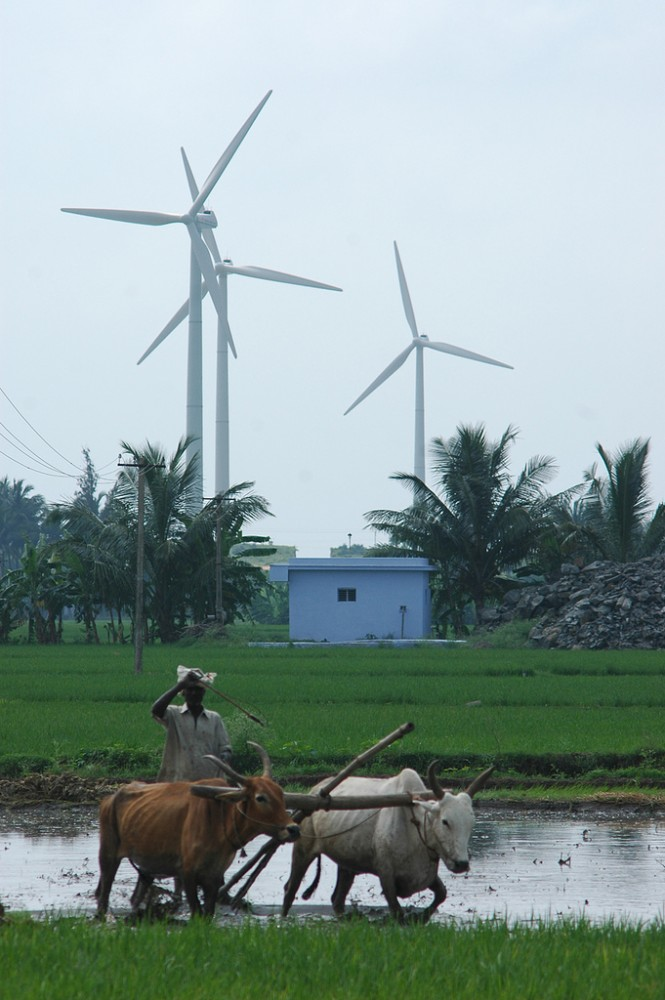 <p>While the prevailing economic growth model focuses on increasing GDP above all other goals, a Green Economy promotes a triple bottom line: sustaining and advancing economic, environmental and social well-being. Photo credit: Flickr/Yodel Anecdotal.</p>