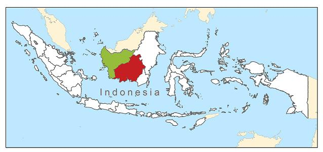 <p>This map shows the location of West Kalimantan (green) and Central Kalimantan (red).</p>
