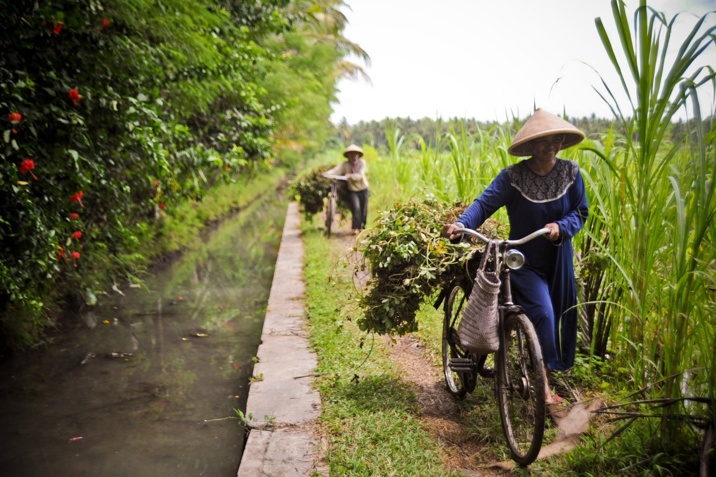 <p>One way to address the food gap is to shift diets towards less resource-intensive foods. Flickr/Asian Development Bank</p>