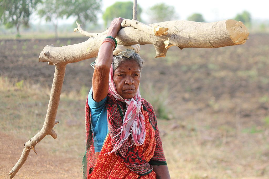 <p>A woman carries firewood in Mahasrashtra, India. Photo by Azhar feder/Wikimedia Commons</p>