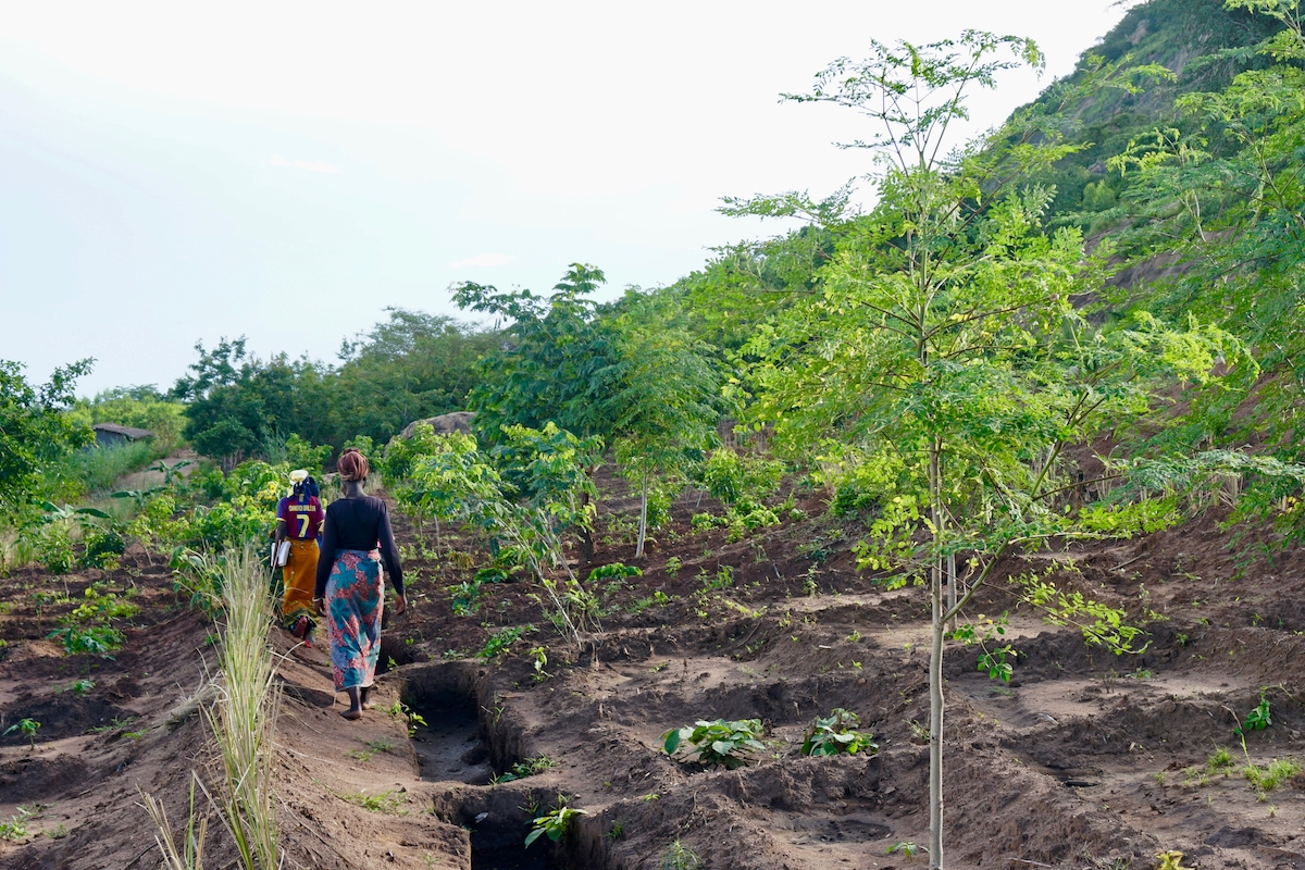 <p>Communities pilot different restoration techniques with USAID\'s NJIRA project\'s work in the Khole watershed. Photo by Sabin Ray/WRI</p>