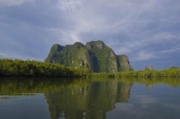<p>Mangroves in Thailand. Photo credit: flickr/gumuz</p>