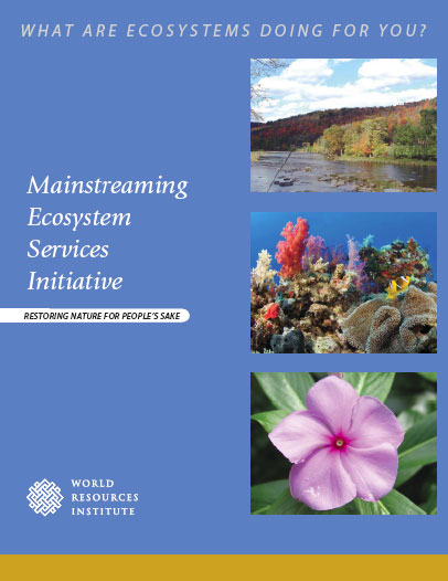 <p>WRI\'s Mainstreaming Ecosystem Services Initiative brochure</p>