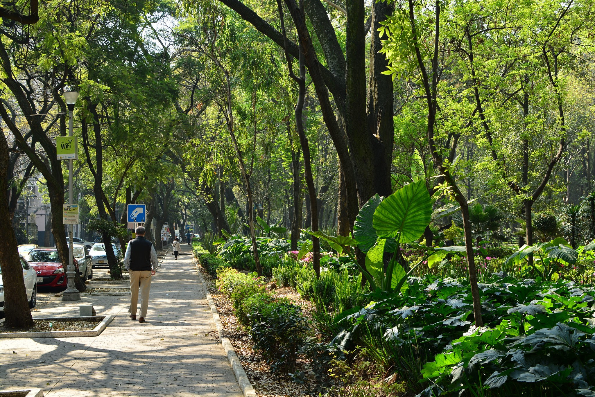 <p>Green space in Mexico City. Photo by cbherlich/Flickr</p>