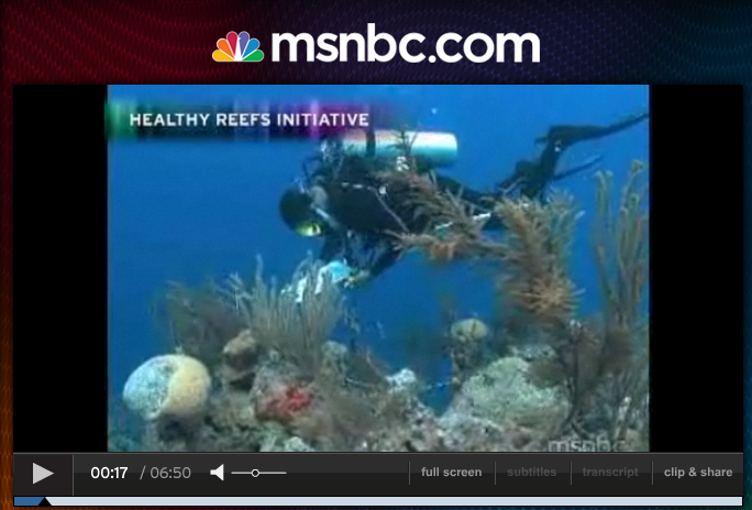 <p>Watch the MSNBC segment on the Eco-audit</p>