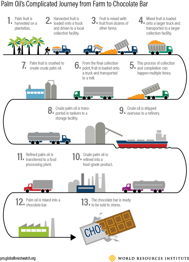 <p><em>The above graphic is representative of one potential path palm oil can take from farm to product</em>.</p>