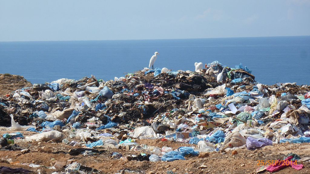 <p>Experts predict oceans will hold more plastic than fish by 2050. Photo by Belgueblimohammed2013/Wikimedia Commons</p>
