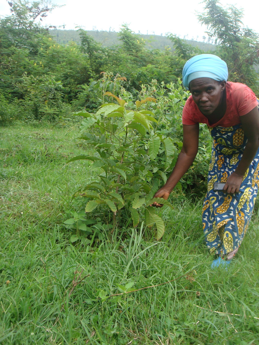 <p>Patricie Nyirabahinzi on her land. Credit: WRI</p>
