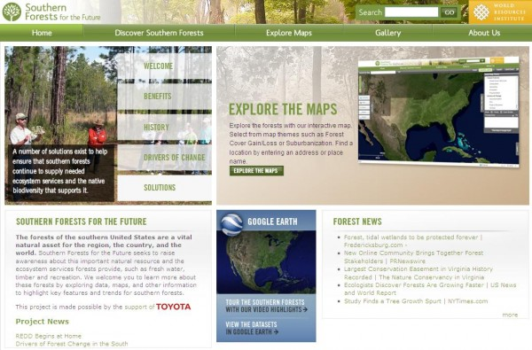 <p>seesouthernforests.org</p>
