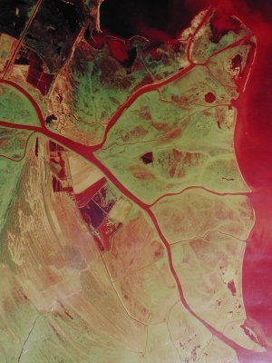 <p>Satellite View of Danube Canal in Ukraine</p>